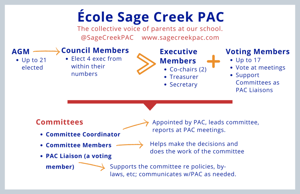Chart showing how PAC members are elected and organized